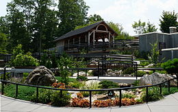 NC Arboretum is a covid friendly activity in Asheville